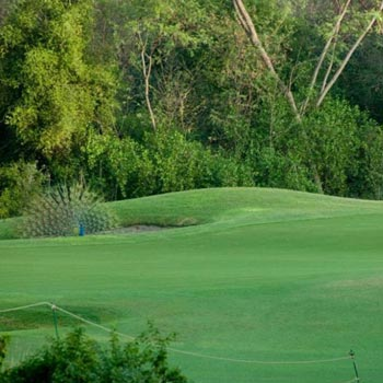 Delhi Golf Tour with Agra