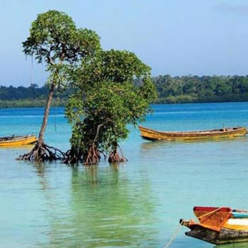 Portblair, Baratang, Rangat, Diglipur, Havelock, Neil Tour