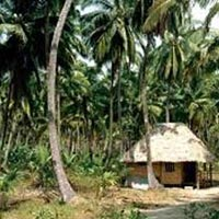 Andaman 6 Nights 7 Days Package