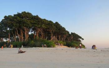 6 NIghts & 7 Days Andaman Exotic Honeymoon Tour Package