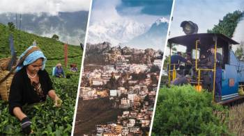 04 Nights/5 Days Best of Darjeeling Tour Package