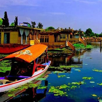 A blissful holiday in Kashmir 6N-7D Package