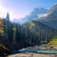 Best Kashmir Tour