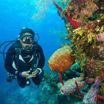 Scuba Diving 3 Nights Tour