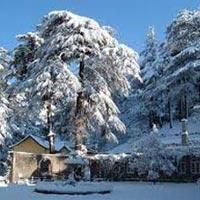 Shimla Hill Station Package