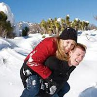 Himachal Delhi Honeymoon Tour