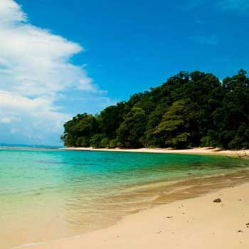 Trip To Andaman 7N/8D Package