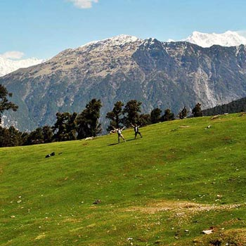 Chopta-Chandrashila Trek with Deoria Tal (Fixed Departure Tour)