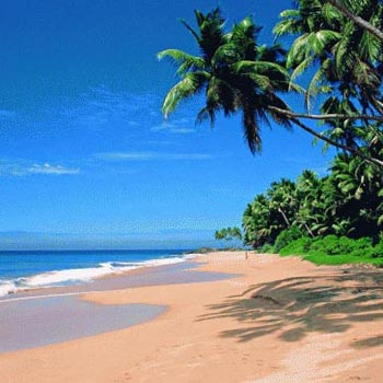 Full Day North Goa Tour From Calangute