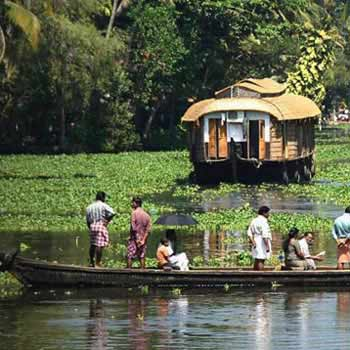 Munnar - Alleppy Backwater Cruise Tour