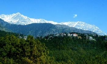 Himachal Group Package