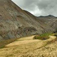 4 Days Ladakh Trekking Tour
