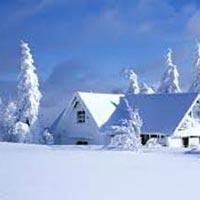 Winter Kashmir Tour 03 Nights / 04 Days