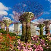 Wonders of Southeast Asia with Cruise Tour
