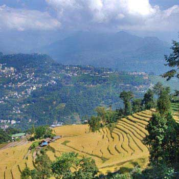 Short Escape to Gangtok Package