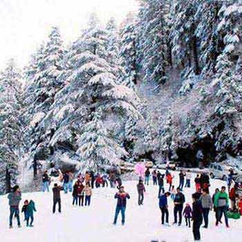 Adventure Retreat in Shimla