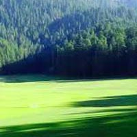 Heaven Himachal by Car Ex. Delhi Tour