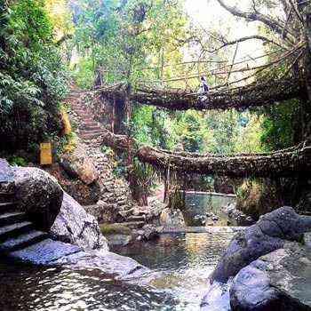 7N 8D Guwahati Shillong Kaziranga Tour Packages