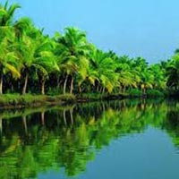 11 Days 10 Nights Glimpse Of Kerala Package