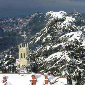 Manali & Shimla Tour Package