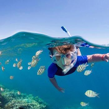 Seychelles Mahe Island Tour