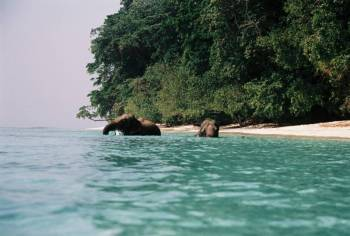 Andaman Special- 5 Nights and 6 Days Tour