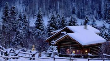Calling Tour Shimla