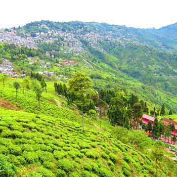 Sikkim with Darjeeling Tour