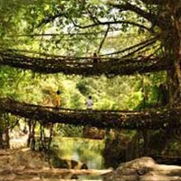 An Amazing Meghalaya Tour Package