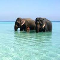 Andaman Thrill Tour