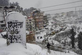 Beautiful Shimla Kufri Tour