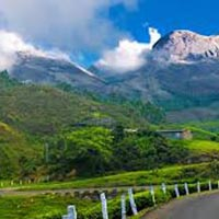 Budget Cochi Munnar Tour Package