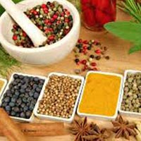 Kerala Ayurveda Healing and Treatment Package