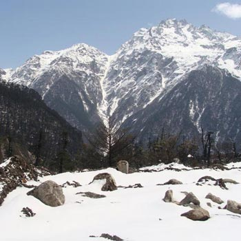 Discover Sikkim Package