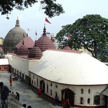 Assam-Shilong-Kaziranga Tour