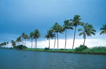 Kerala Hills & Backwater Tour