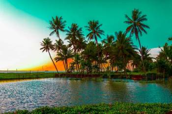 Cool Kerala Tour