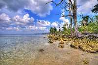 5 Night 6 Days Beautiful Andaman Tour
