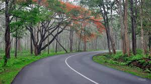 Mysore Coorg Chikmagalur Tour by Innova 7+1