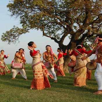 Assam-Nagaland Delight Package