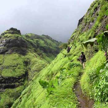 Magical Attractions Of Western India Tour