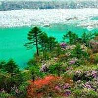 Darjeeling Gangtok Trip Package