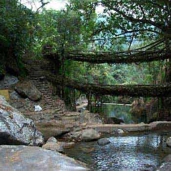 North East with Cherrapunji Tour