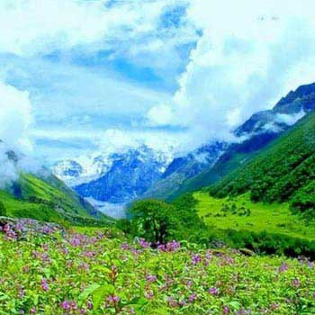 Valley of Flowers Trek 2018 Package