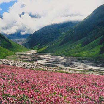 Valley of Flowers Trekking Trip Tour