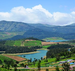 3n4d Ooty Honeymoon Package