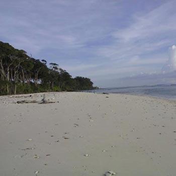Baratang Island Lime Stone Trip 8 Days 7 Night Tour