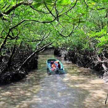 Andaman City tours 8 Days 7 Night Tours