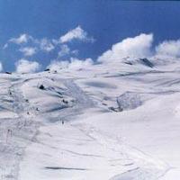 Auli Ski Tour Package