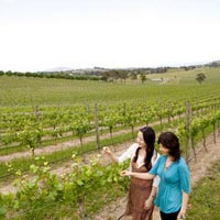 Self - Drive Tour of Melbourne
